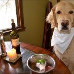 Lý giải về dinh dưỡng giống chó to, nhỏ khác nhau như thế nào