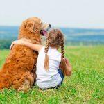 Tại sao nên nuôi một chú chó trong gia đình
