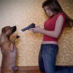 Cười rụng răng với những hành động của thú cưng